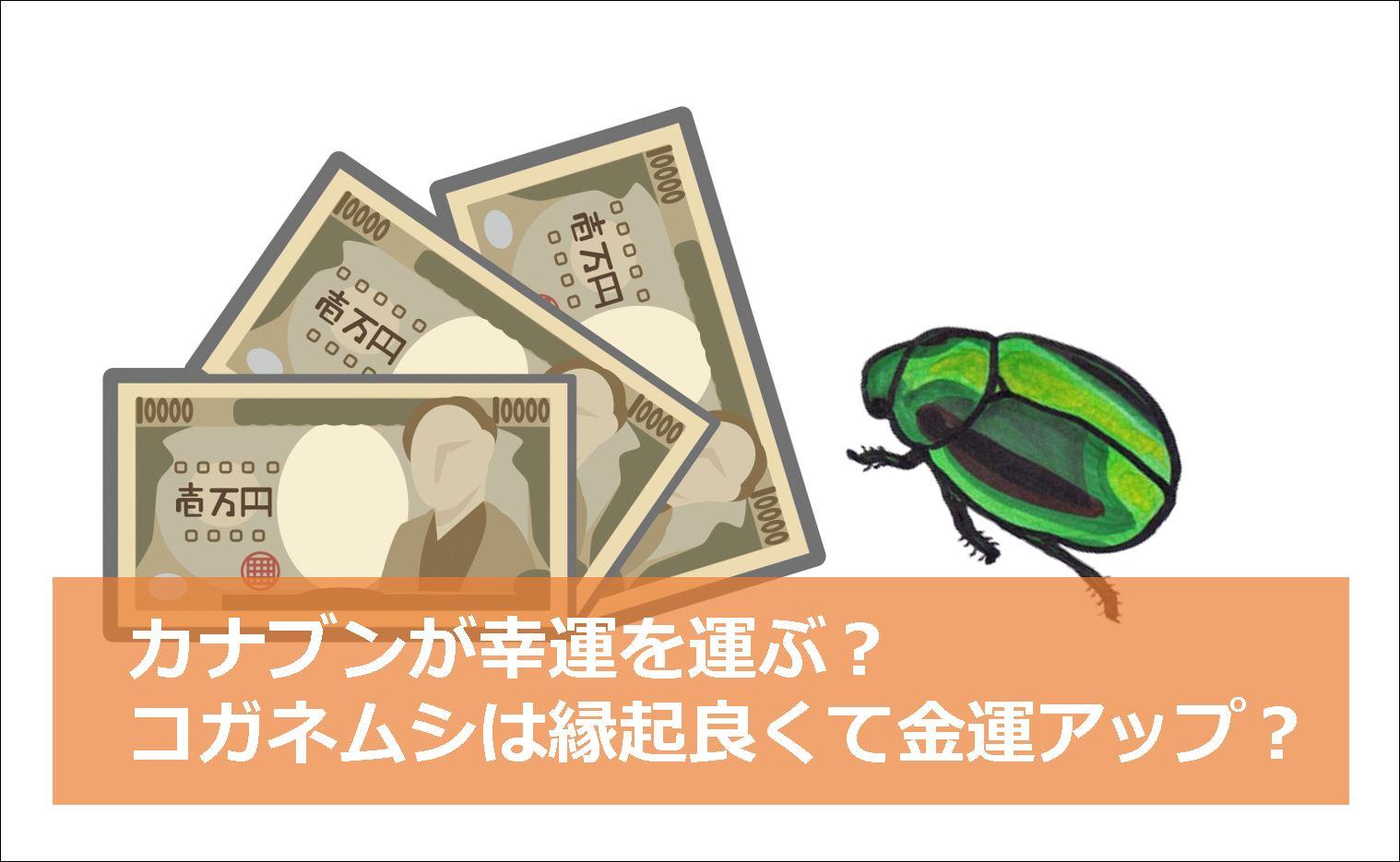 退治 カナブン 有効なコガネムシの駆除方法とは?成虫だけでなく幼虫にもご注意を! 生活110番ニュース